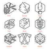 La línea fina iconos del vector fijó con los árboles para el infographics y UX UI de la naturaleza y de la ecología Imagenes de archivo