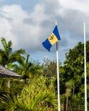 La località di soggiorno delle Barbados Immagine Stock Libera da Diritti