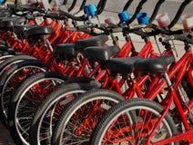 La location fait du vélo le plan rapproché Image stock