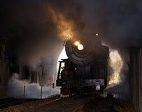La locomotiva di vapore entra nel traforo Immagine Stock Libera da Diritti