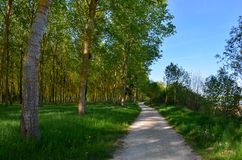 La Loire à vélo Stock Image