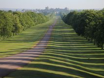 La longue promenade, stationnement grand de Windsor, Angleterre. Photographie stock libre de droits