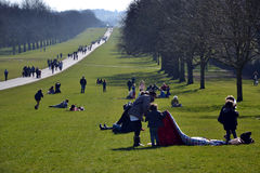 La longue promenade, Windsor Great Park, Angleterre, R-U Photos libres de droits