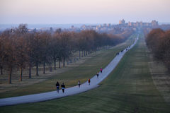 La longue promenade, Windsor Great Park, Angleterre, R-U Images stock