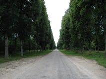 La longue route jusque l'oeil peut voir avec des arbres sur l'un ou l'autre d'extrémité image stock