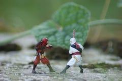 La lotta del Ninja Fotografie Stock Libere da Diritti