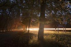 La luce dell'automobile trascina in foresta colorata bello autunno fotografia stock
