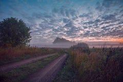 La luce di mattina Fotografia Stock Libera da Diritti