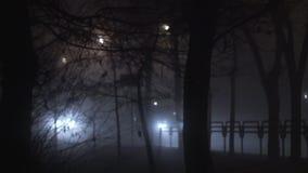 La luce intensa dai fari delle automobili splende attraverso la nebbia su una strada alla notte, visibilità difficile dovuto fosc video d archivio