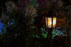 La luce nell'oscurità Fotografie Stock Libere da Diritti
