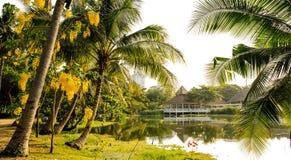 La luce solare di scena più bella sopra il lago fra i cocchi Fotografia Stock