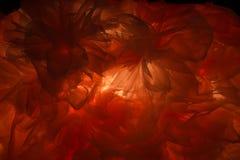 La luce splende attraverso i precedenti astratti dei vestiti Fotografie Stock