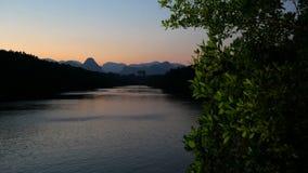 La lumière clignote au-dessus de la rivière avec un arbre vert dans le premier plan banque de vidéos