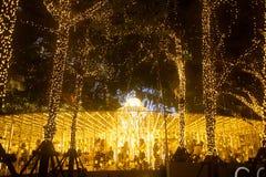 La lumière décorent beau sur la célébration 2017 d'arbre de Noël Photos stock