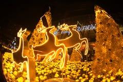 La lumière décorent beau sur la célébration 2017 d'arbre de Noël Photographie stock libre de droits