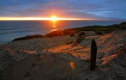 La lumière d'un croisement de coucher du soleil à travers les dunes arénacées à du bois de flottage s'est levée dans le sable photo libre de droits