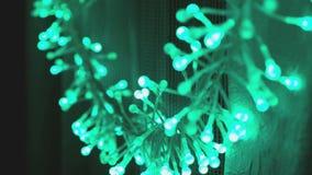 La lumière de guirlande de LED clignote verte clips vidéos