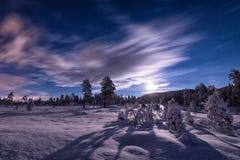 La lumière de pleine lune au-dessus de la neige a couvert la forêt dans Heia, région de Grong, Norvège du nord photo stock