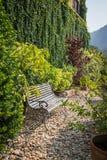 La lumière du soleil dans le début de la matinée émettent une chaise en bois Image stock