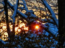 La lumière du soleil de matin brille par la neige photographie stock libre de droits