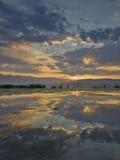 Matin dans le lac Images libres de droits