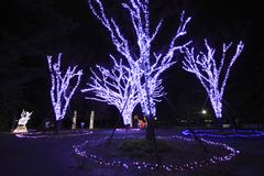 La lumière du spectacle pompeux à Sendaï Photos stock