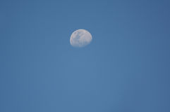 La luna fotografie stock