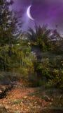 La luna creciente enorme cuelga sobre selva Fotografía de archivo libre de regalías