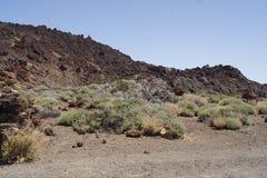 La luna del teide de las islas Canarias de Tenerife estropea Fotografía de archivo
