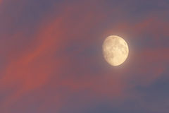 La luna en el cielo Imágenes de archivo libres de regalías