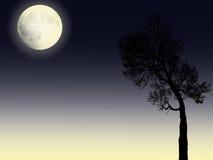 La Luna Llena ilumina y el árbol de la silueta en fondo Stock de ilustración