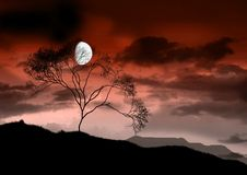 La luna luminosa piena. Fotografie Stock