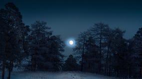 La luna nel legno Immagine Stock
