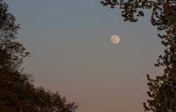 La luna piena come il Sun sta mettendo Fotografia Stock Libera da Diritti