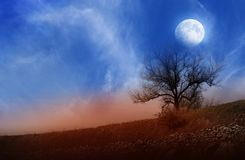 La luna sopra un paesaggio Fotografie Stock Libere da Diritti