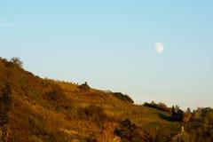 La luna sul colore della vigna Fotografie Stock Libere da Diritti