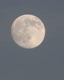 La lune au crépuscule en décembre Images libres de droits