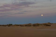La lune se lève en dessert Photos libres de droits