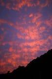 La luz antes de la salida del sol Imágenes de archivo libres de regalías