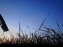 La luz antes del crepúsculo en el desierto foto de archivo libre de regalías