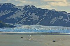 La luz de la mañana cae en el glaciar que alcanza el océano. fotografía de archivo libre de regalías