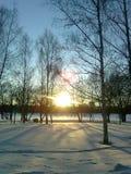 La luz de la mañana en un parque en Moscú no lejos de la casa Fotografía de archivo libre de regalías