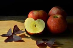 La luz del sol cae en manzanas y hojas frescas de la púrpura imagen de archivo libre de regalías