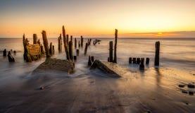 La luz del sol de la mañana golpea los viejos posts de madera en la playa en el punto Spurn cerca del casco, Yorkshire, Inglaterr Foto de archivo libre de regalías