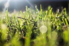 La luz natural espectacular Foto de archivo libre de regalías