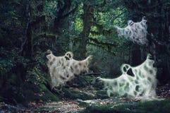 La luz oscuro mágica frecuentó el bosque con tres fantasmas asustadizos Imágenes de archivo libres de regalías