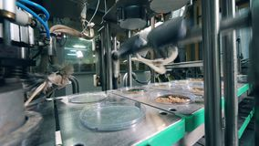 La máquina de la fábrica está sellando las migas de pan con los pedazos de la hoja Equipo de la f?brica de la comida almacen de metraje de vídeo