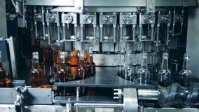 La máquina de la fábrica está vertiendo el alcohol en las botellas vacías metrajes