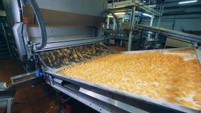La máquina de la fábrica está volviendo a poner pedazos de patatas a la inglesa almacen de video