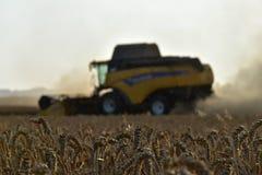 La máquina segador amarilla cosechó el grano Época del foco de la cosecha en grano El polvo vuela de la trilladora imagen de archivo libre de regalías